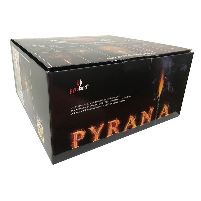 Jetzt Pyrania 144-Schuss-Feuerwerkverbund ab 99€ bestellen
