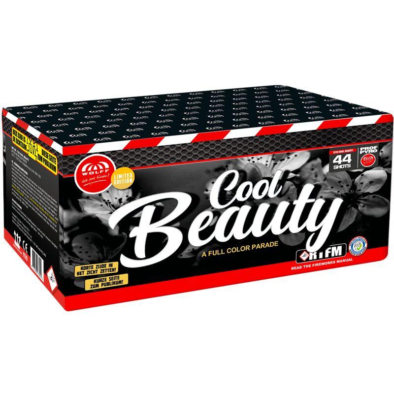 Jetzt Cool Beauty 44-Schuss-Feuerwerk-Batterie ab 25.49€ bestellen