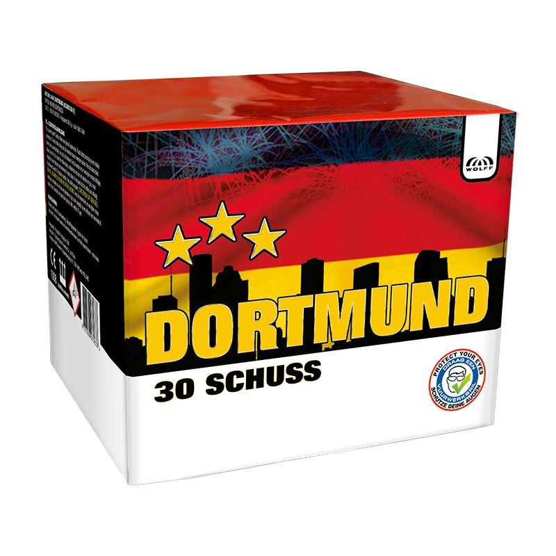 Jetzt Dortmund 30-Schuss-Feuerwerk-Batterie ab 16.14€ bestellen