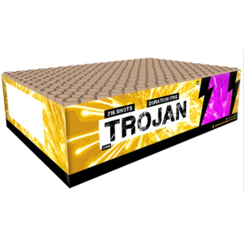 Jetzt Trojan 216 Schuss-Feuerwerkverbund ab 93.49€ bestellen